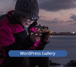 Visit the WordPress gallery